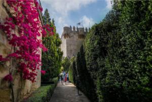 Castillo Musulmán - Castillo Almodóvar
